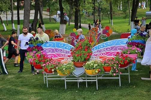 цветочные бабочки